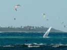 windsurfkite